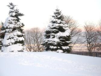 winter4